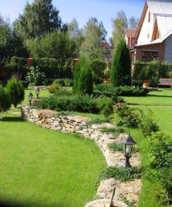 Уход за газоном и садом
